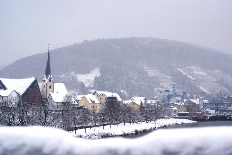 Erlenbachsnow