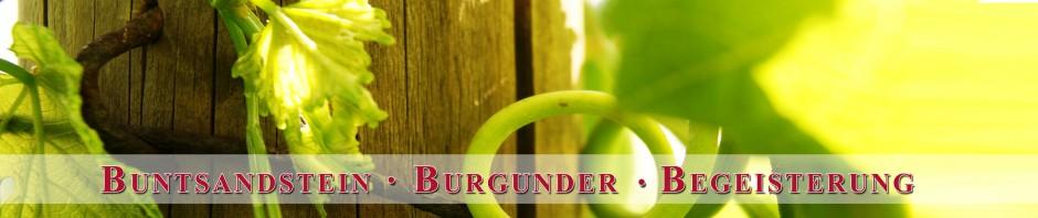 Buntsandstein - Burgunder - Begeisterung
