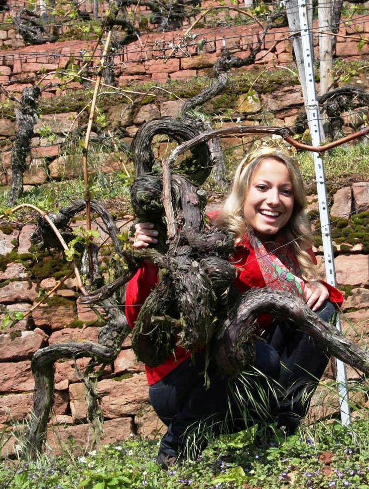 Fränkische Weinkönigin Melanie Unsleber+Portugieser Rebe 2010