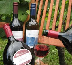 Eine kleine Weinauswahl aus dem Angebot des Weinguts Waigand in Erlenbach am Main